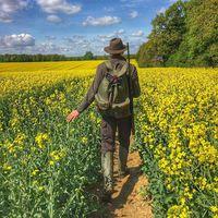 Gone hunting #hunt #hunting #hunter #yellow #flowers #floweringfield #spring #april #roedeer #roedeerbuck #seasonstarted #nature #huntingphoto #huntphotos #naturephotography #mik #yolo #ikozosseg #erdozugas #alwaysontheyellowpath #repost @keiysersoze @kalovicstamas
