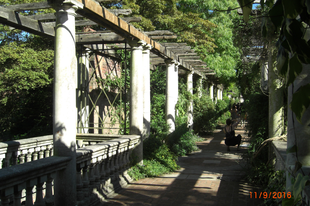 Pergola kert, /Hampstead Heat, London, 29