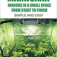 ?TOP? How To Grow Marijuana Indoors In A Small Space From Start To Finish: Simple And Easy - Anyone Can Do It!. Parte clinicas PROFINET Hoteles varios centro