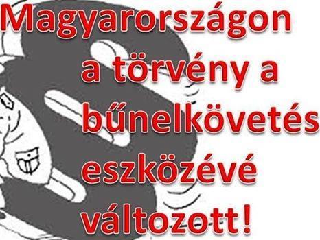 bunelkovetes_torvennyel.jpg