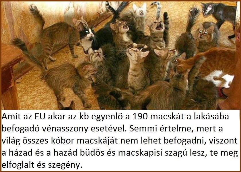 kobor_magykak_es_az_eu.jpg