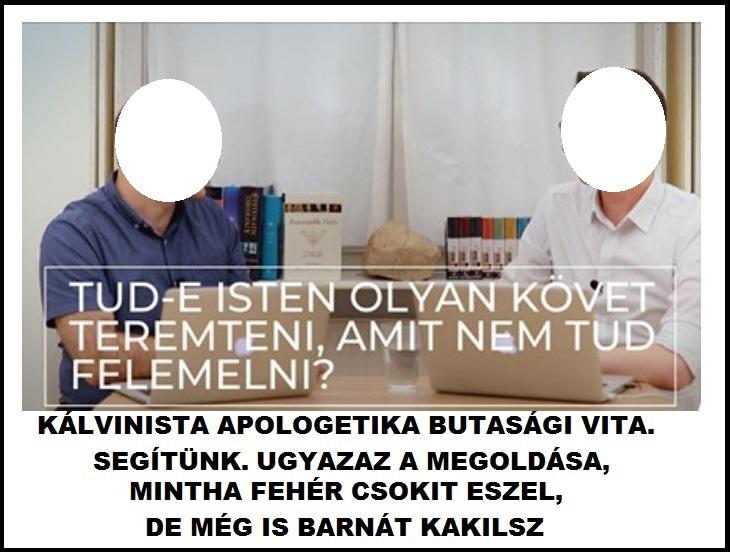 koistenke_kalvinista_apologetika.jpg