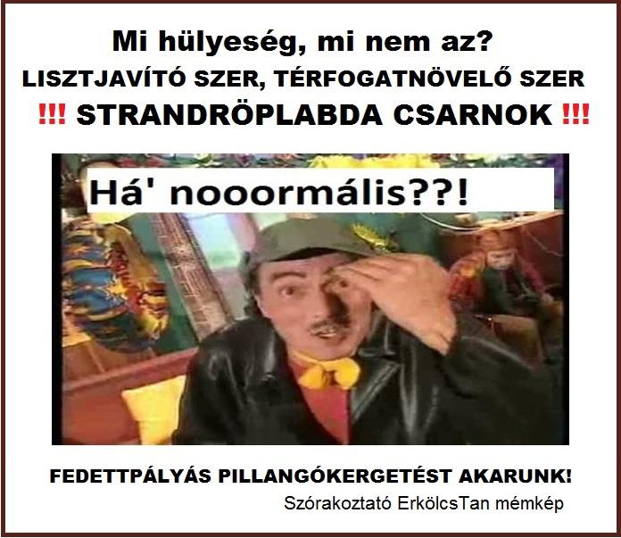 strandroplabda_csarnok.jpg