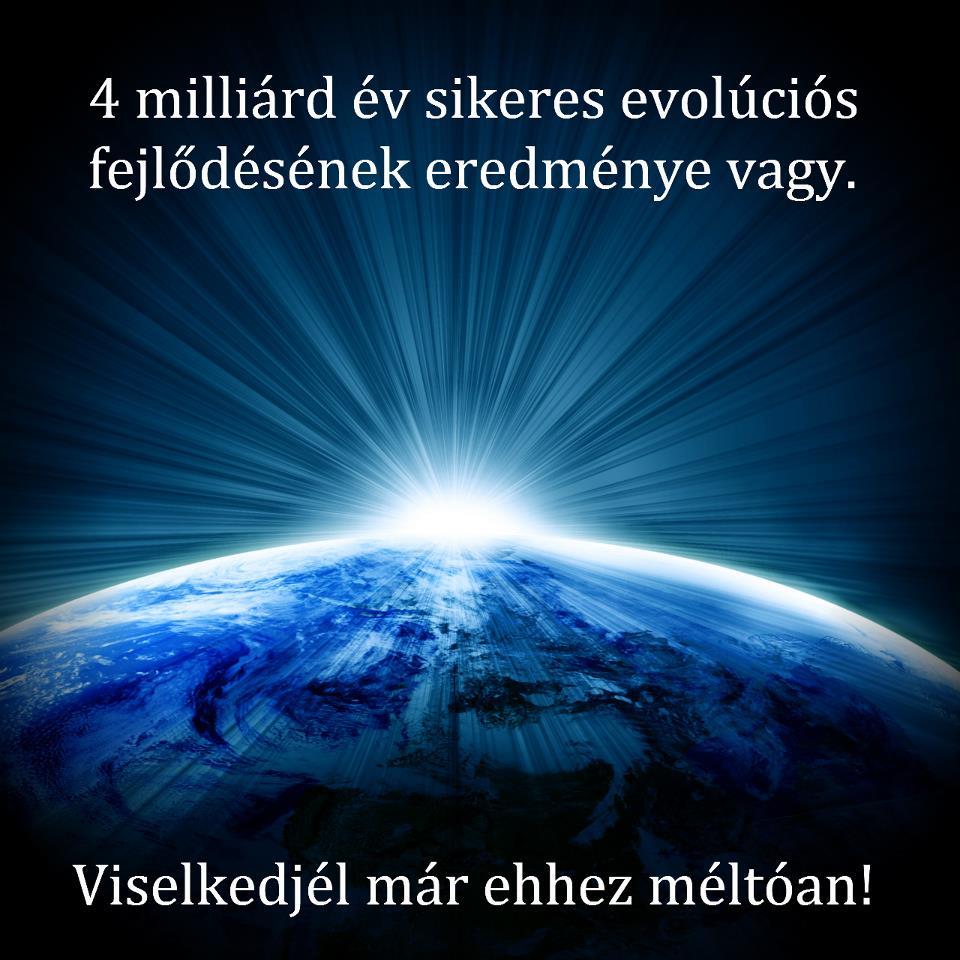 4_milliard_ev_1361342566.jpg_960x960
