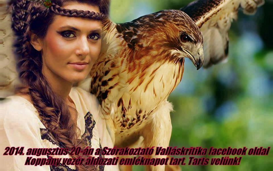 kopp_ny_eml_knap_1408522569.jpg_960x600