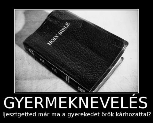 orok_karhozat_1347957679.jpg_500x400