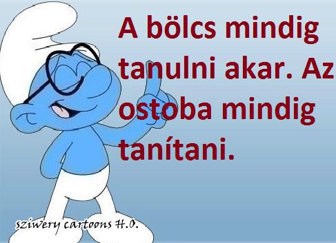 ostoba_tanitani_akar_1376111374.png_487x353