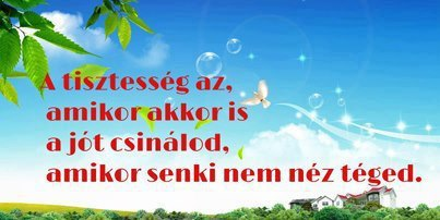 senki_sem_nez_1370780928.jpg_403x202