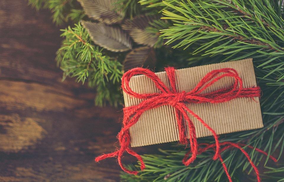 christmas-3859552_960_720.jpg