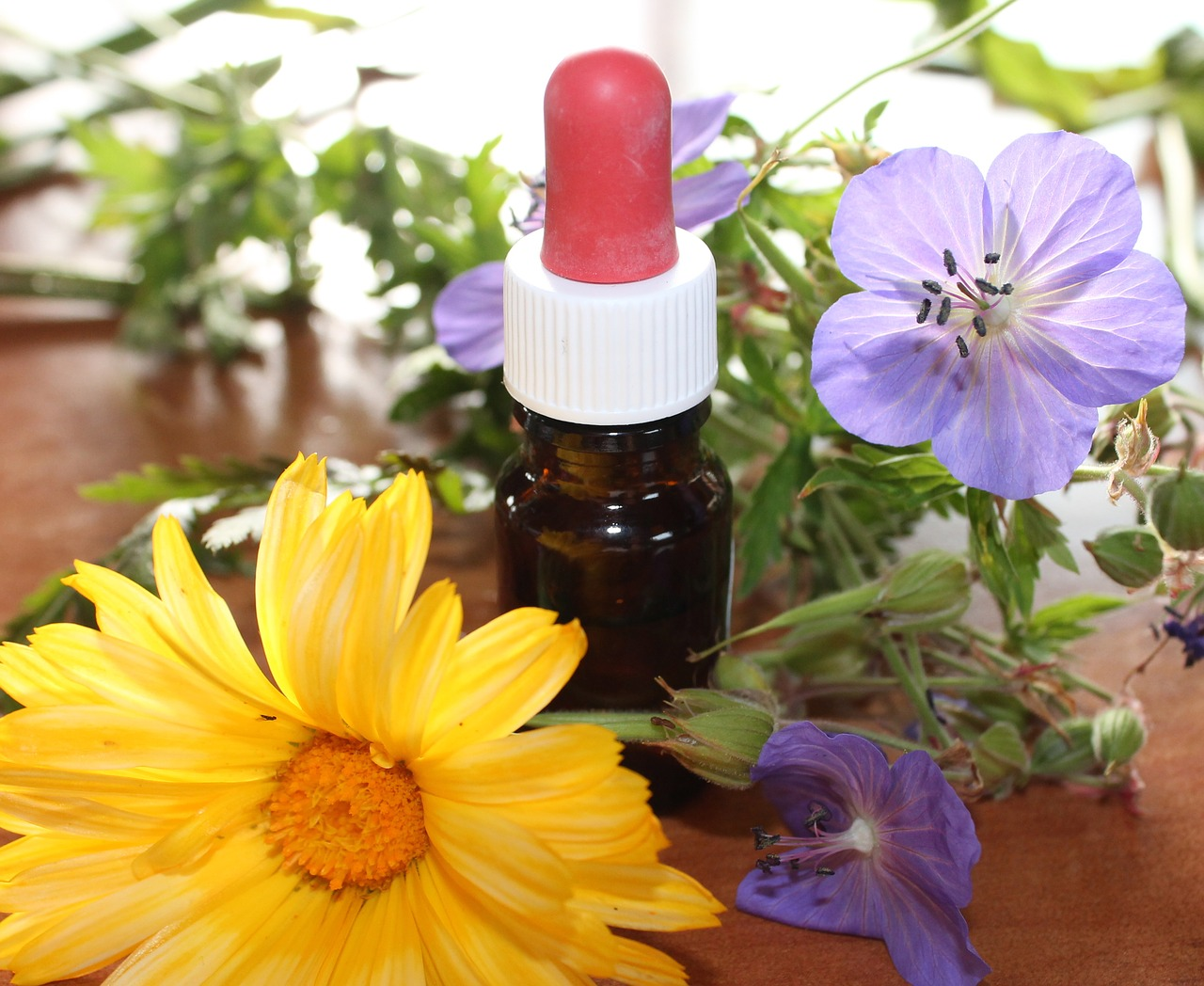natural-medicine-1738161_1280.jpg