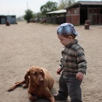 Élet a farmon...