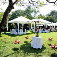 A kerti esküvő