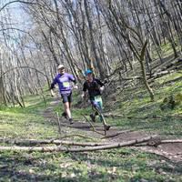 VTM félmaraton - 2016.03.27/ Szár