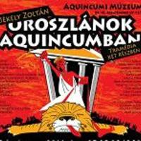Oroszlánok Aquincumban