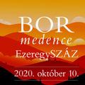 Határtalan Kárpát-medencei borünnep a Duna Palotában október 10-én