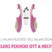 TELEKI PIKNIK - Villányi Borzsongás