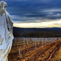 Egerszalók- előváros nagy borokkal