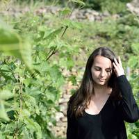 Újak, frissek, fiatalok – 5 új borász került be 2017-ben a Juniborba