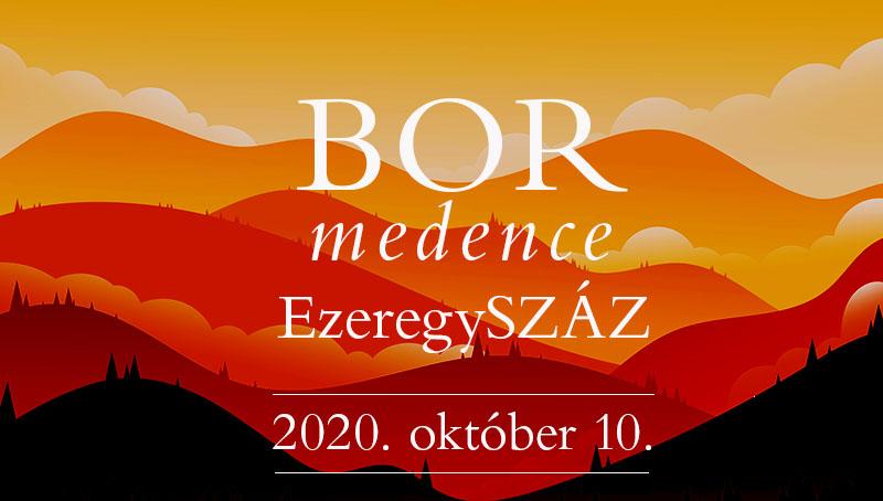 bormedence_cover1.jpg