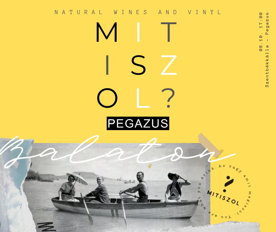 mitiszol_face_bejegyzes.png