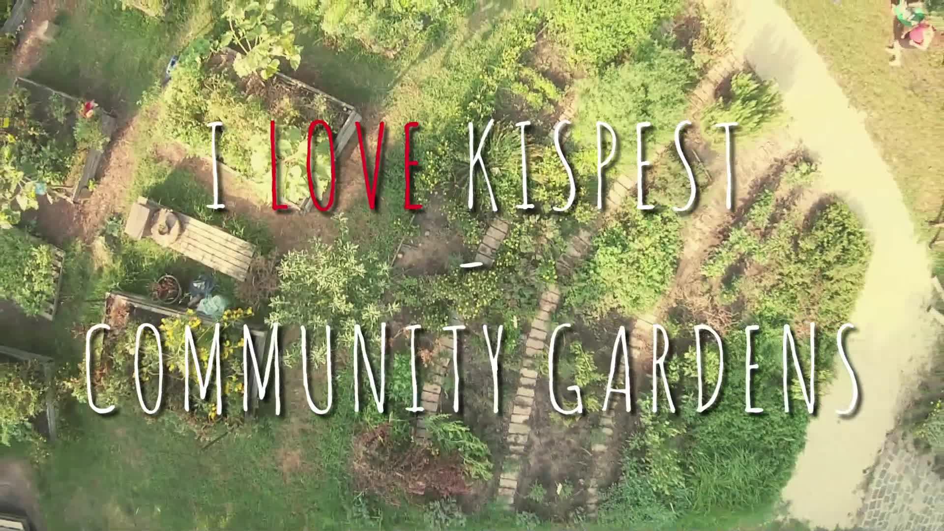 i_love_kispest.jpg