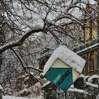 Évszakok, Versek, Tájak: A Bükk és a Tél színei