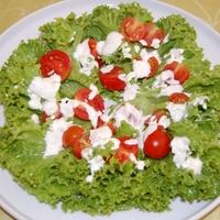 Paradicsom salátával, fűszeres tejföllel