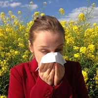 Kisokos allergiásoknak keresztallergén táblázattal