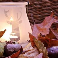 Őszi dekorációk egyszerűen, fillérekből!