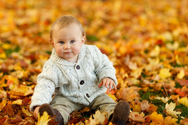 autumn-275920_640.jpg
