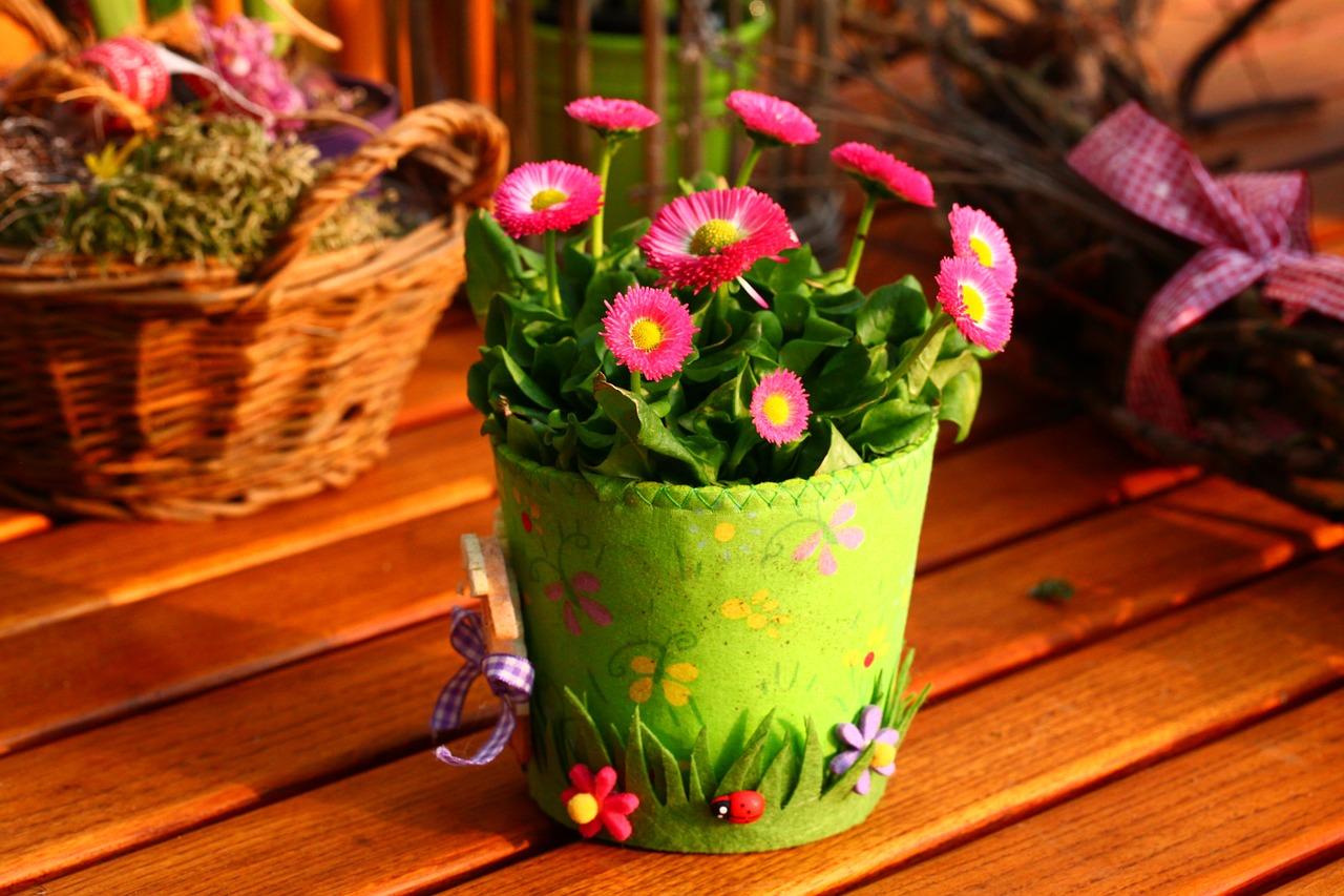 spring-800240_1280.jpg