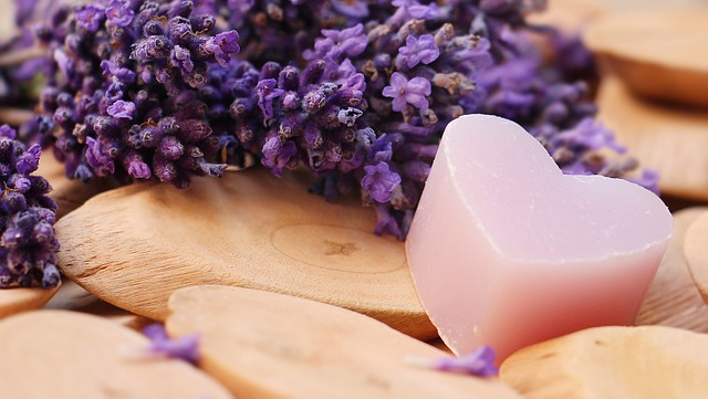 lavender-2443220_640.jpg