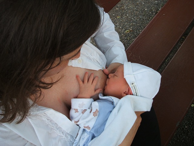 breastfeeding-2090396_640.jpg
