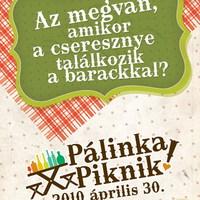 Pálinka Piknik