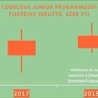 A karrierváltás sikere programozóként garantált -- Végzős tanulói fizetését elemezte a Codecool programozóiskola