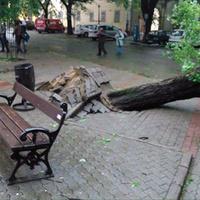 Vasárnapi vihar: 8 ezer kárbejelentés