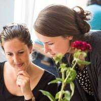 Társadalmi célú startupok számára hirdet versenyt és képzést az SAP