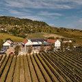 Új szőlőfeldolgozó és díjátadó a Tornai Pincészetben