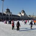 Ingyenes korcsolyázási lehetőség a budapesti óvodás és kisiskolás csoportoknak a Városligeti Műjégpályán