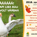 Márton-napi Liba Buli a Holnemvolt Várban Szombaton és vasárnap is sok program lesz az Állatkert új játszóparkjában