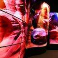 Már Magyarországon is elérhetők az LG testreszabható, hajlítható kereskedelmi OLED kijelzői