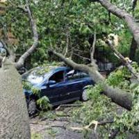 Több, mint 300 kárbejelentést hozott a vasárnapi vihar