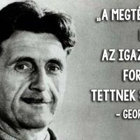 A magyarok ötöde hazudott már a munkahelyén