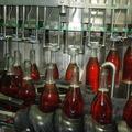1 milliárd forintos fejlesztés a Varga Pincészetnél - palackozási csúcstechnológia Badacsonyörsön