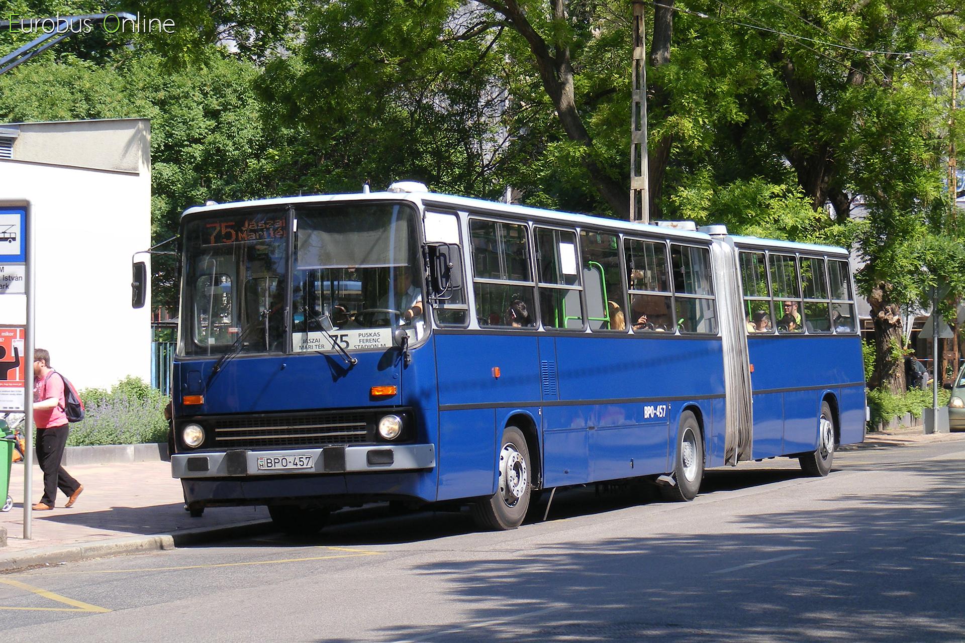 Ugyanitt egy ex piros 7-essel. A kevés Trollino 18 miatt vegyesen közlekednek a buszokkal, mint 'magaspadlós számokkal'.