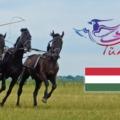 Magyarország is részt vesz a Türkvíziós Dalversenyen