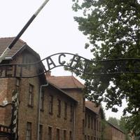 Auschwitz, Wieliczka