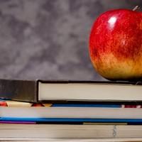Uniós iskolagyümölcs-, iskolazöldség- és iskolatejprogram? Van ilyen!