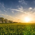 Áprilisban fókuszban: Zöld Európa