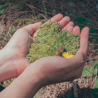 Április az Európa Pontban: környezetvédelem, irodalom, Észtország